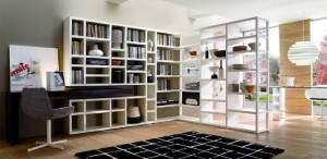bookcase living room